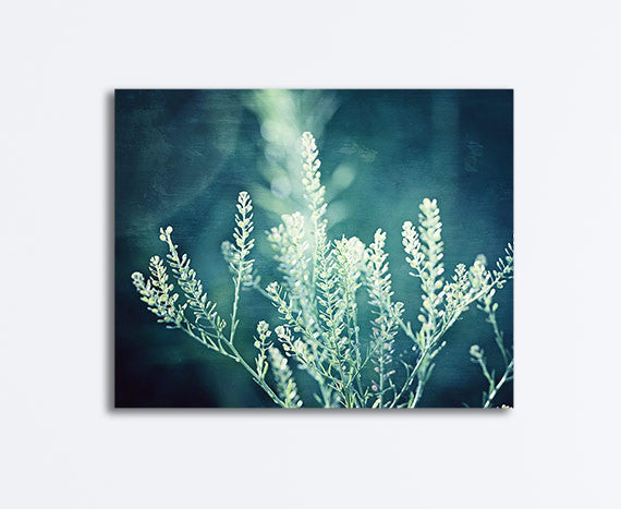 Dark Teal Nature Photography Canvas Art by CarolynCochrane.com