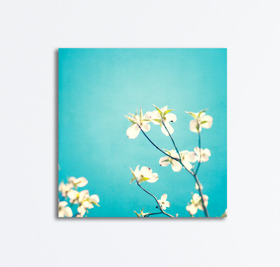 Aqua Blue Flower Canvases by carolyncochrane.com