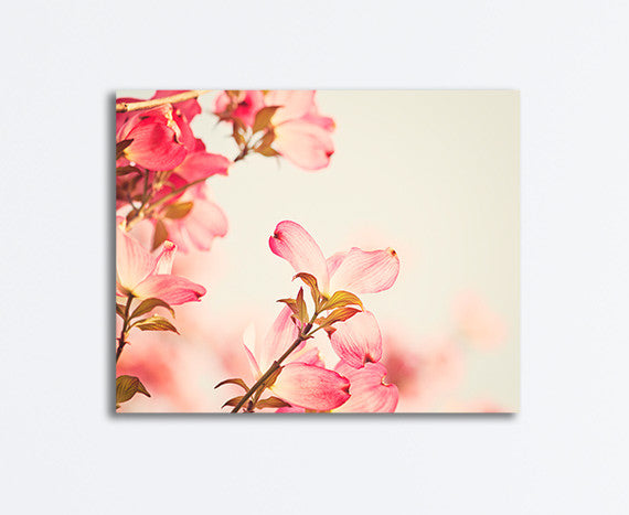 Coral Pink Dogwood Flower Photography Canvas Art by Carolyn Cochrane