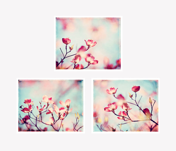 Pink Dogwood Floral Photography Set by carolyncochrane.com