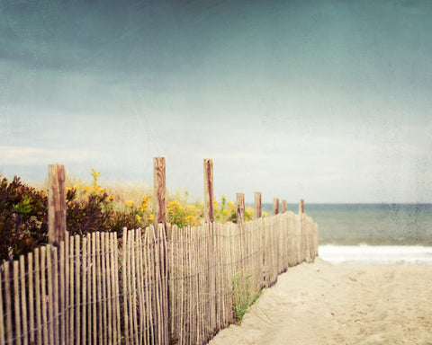 Beach Fence Landscape Photography by carolyncochrane.com