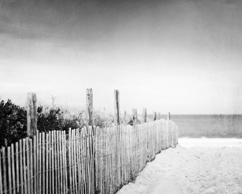 Black and White Beach Photography by carolyncochrane.com