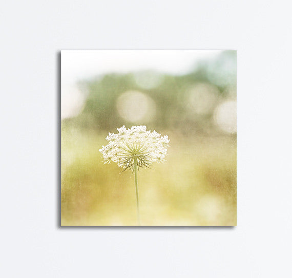 Nature Photography Canvas by carolyncochrane.com | Yellow Art