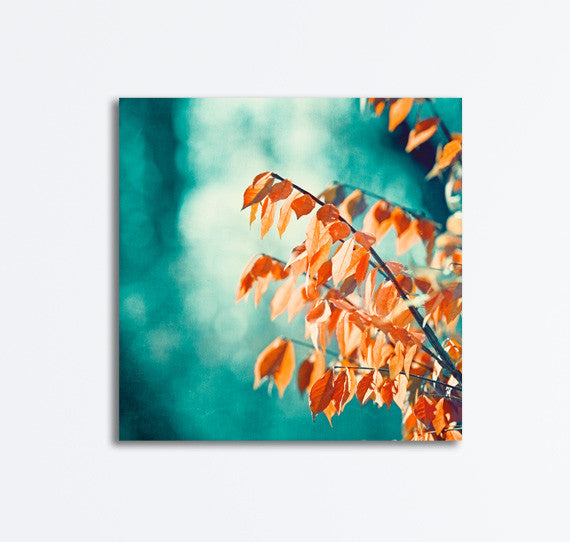 Teal Orange Nature Photography Canvas by carolyncochrane.com