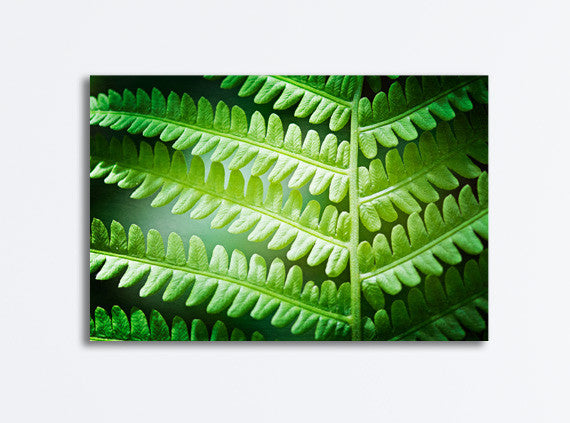 Green Fern Leaf Canvas Art by carolyncochrane.com