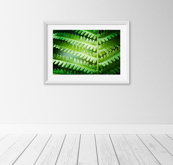 Green Fern Leaf Art by carolyncochrane.com