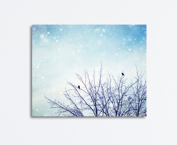 Blue Winter Nature Canvas by carolyncochrane.com