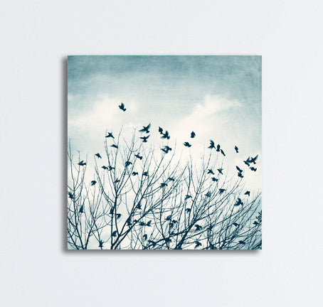 Blue Birds in Tree Canvas Art by carolyncochrane.com