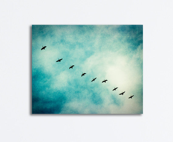 Teal Birds Flying Photograph by carolyncochrane.com