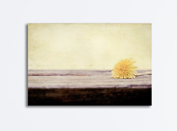 Pale Yellow Nature Art by carolyncochrane.com