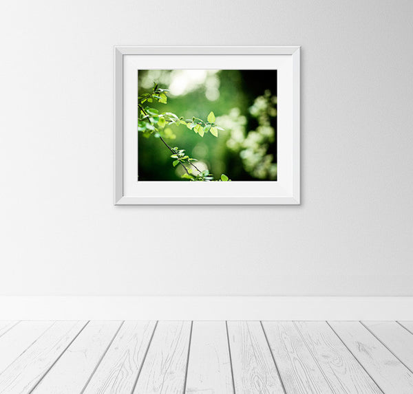 Dark Green Nature Wall Art by carolyncochrane.com