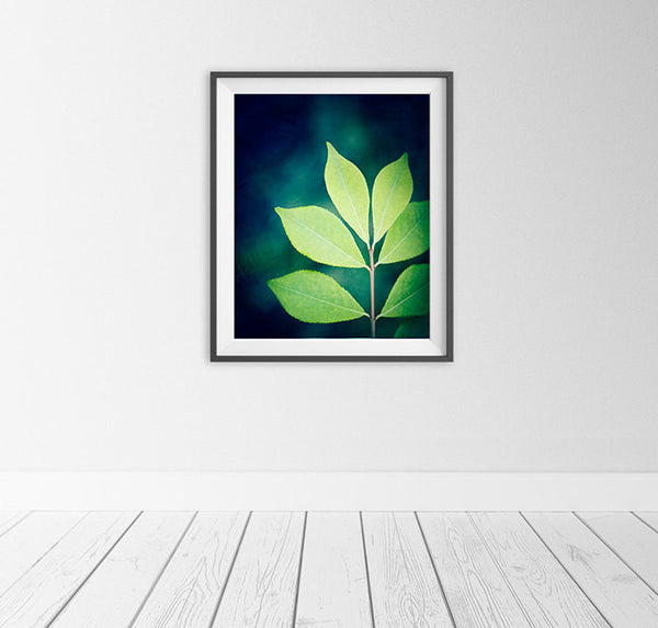 Green Leaf Photography Art Print by Carolyn Cochrane
