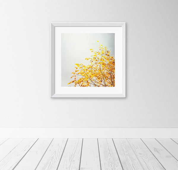 Yellow Grey Wall Art by carolyncochrane.com