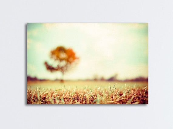 Fall Landscape Canvas Photography by carolyncochrane.com