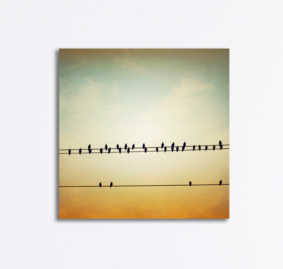 Birds on a Wire Canvas Photography by carolyncochrane.com