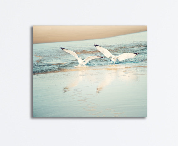 Seagulls Photography Canvas Print by carolyncochrane.com