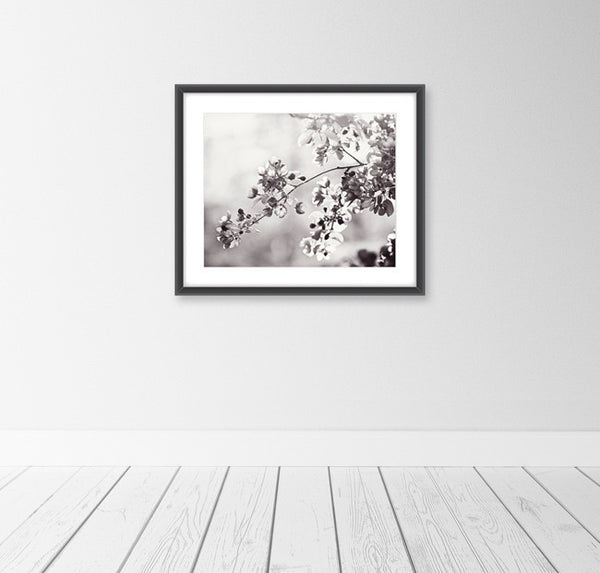 Black and White Floral Art Prints by carolyncochrane.com