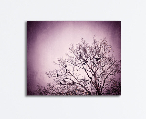 Purple Black Birds in Tree Photography by carolyncochrane.com