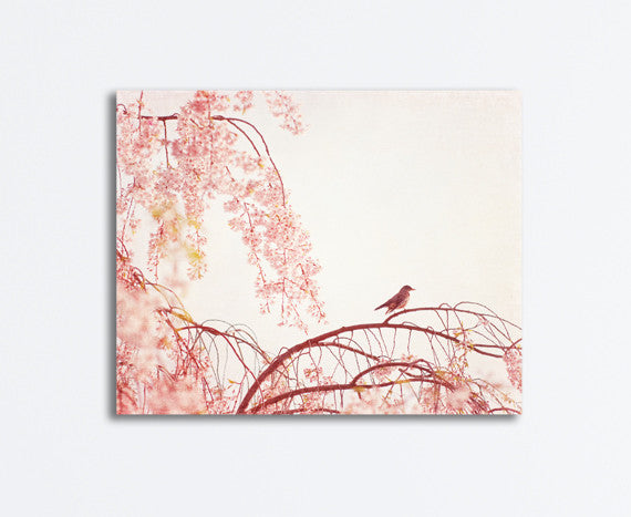 Light Pink Nursery Canvas Art by carolyncochrane.com
