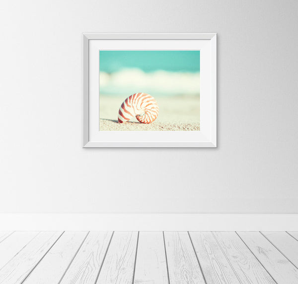 Teal Seashell on Beach Art by carolyncochrane.com