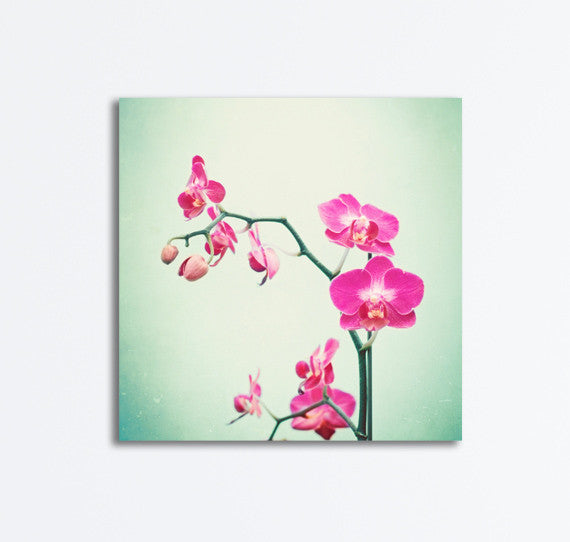 Pink Orchid Canvas Art by carolyncochrane.com