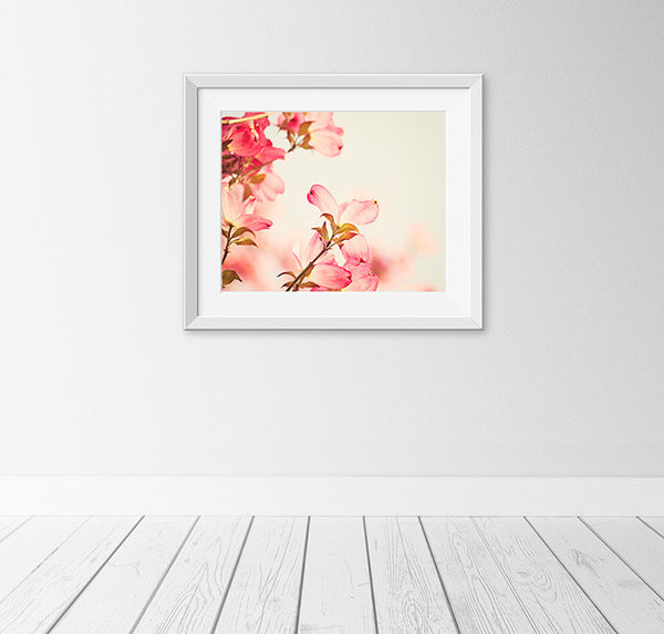 Coral Pink Dogwood Flower Photography Art by Carolyn Cochrane