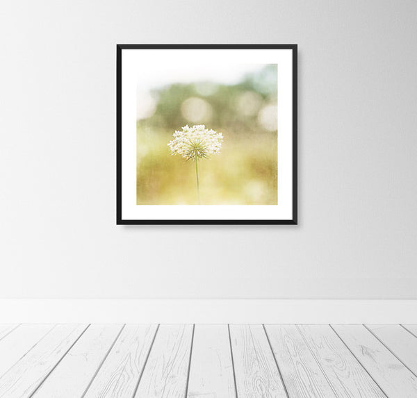 Nature Photography Prints by carolyncochrane.com | Yellow Art