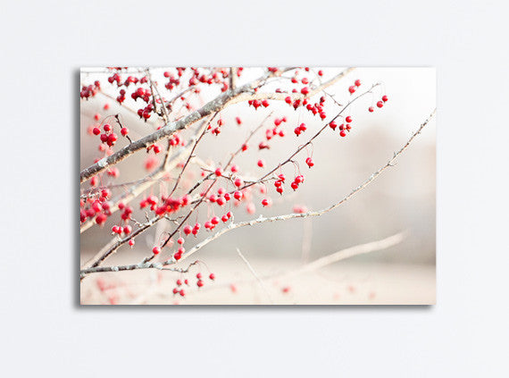 Red Berries Canvas Photography by carolyncochrane.com