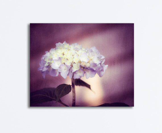 Dark Purple Flower Canvas by carolyncochrane.com