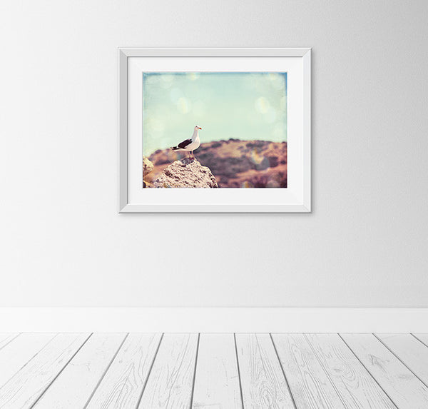 California Beach Photography by Carolyn Cochrane | Seagull on Coast Art Print