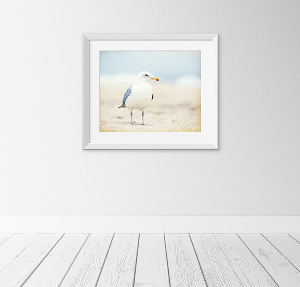 Seagull Photography, Beach Art by carolyncochrane.com