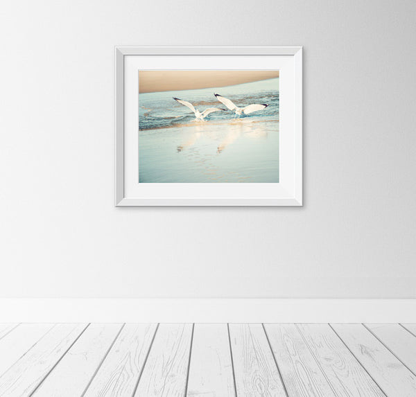 Seagulls Photography Art Print by carolyncochrane.com