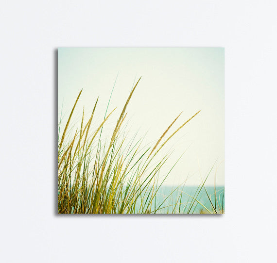 Coastal Canvas by carolyncochrane.com