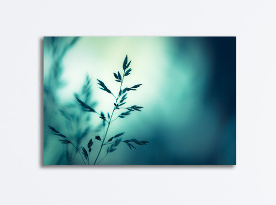 Dark Teal Nature Canvas Art by carolyncochrane.com