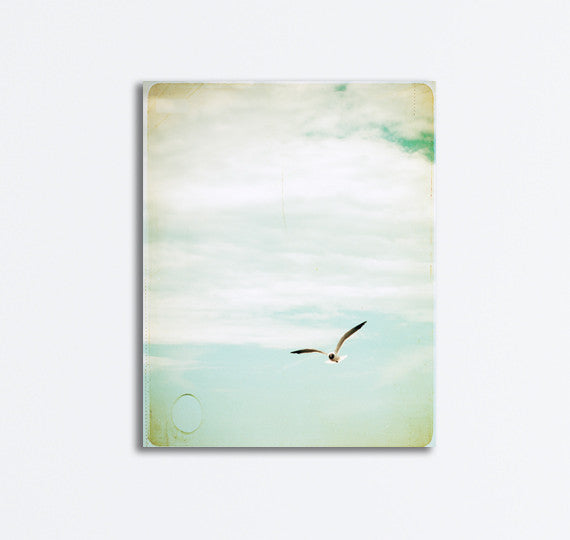Seagull Flying Canvas by carolyncochrane.com