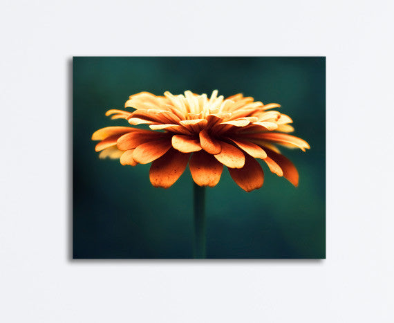 Orange Teal Flower Canvas by carolyncochrane.com