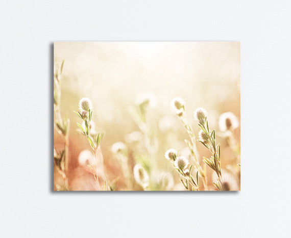 Cream Nature Canvas Art by carolyncochrane.com