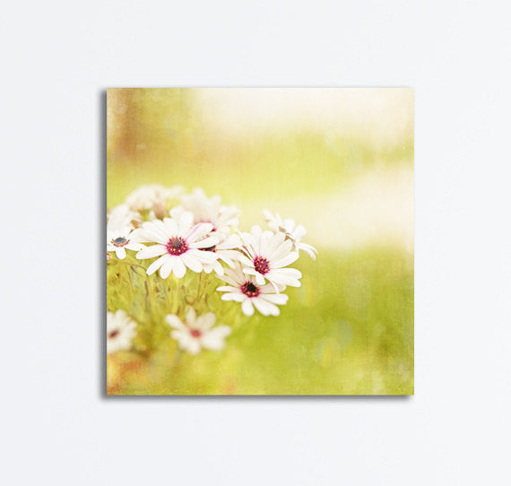 Yellow Flower Photography Canvas Art by Carolyn Cochrane