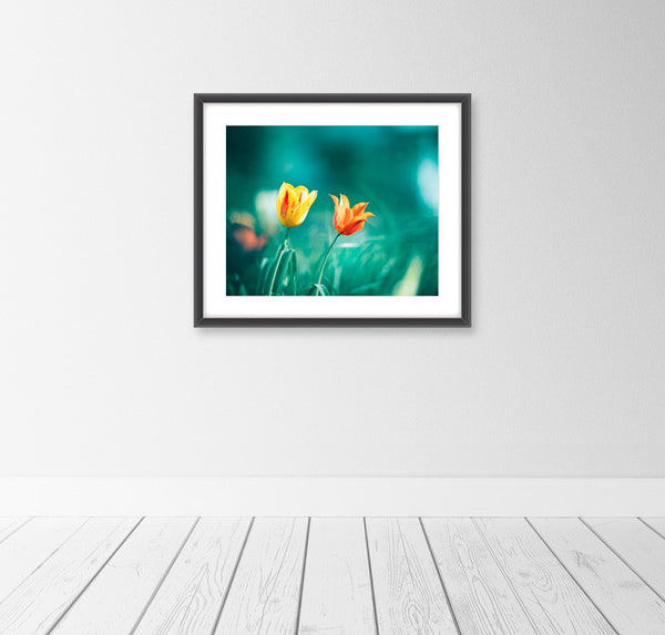 Teal Orange Flower Art by carolyncochrane.com