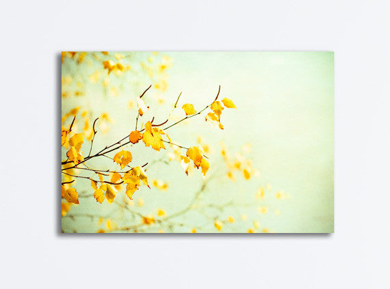 Yellow Mint Nature Canvas by carolyncochrane.com