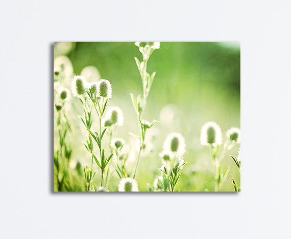 Green Nature Photography Canvas by carolyncochrane.com