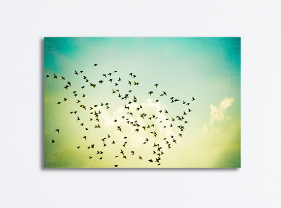 Birds Flying Canvas by carolyncochrane.com