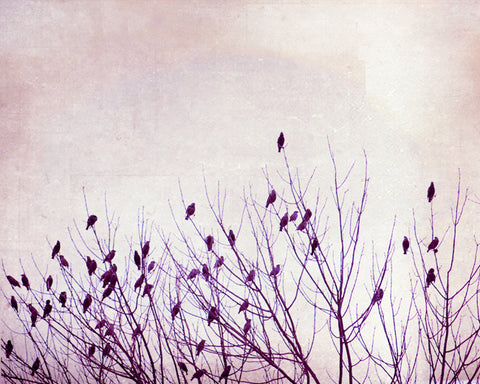 Purple Nursery Bird Art by carolyncochrane.com