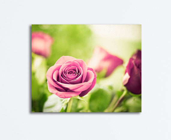 Rose Canvas by carolyncochrane.com