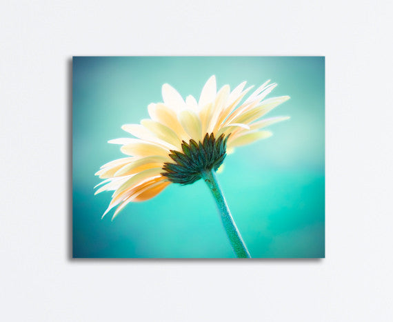 Aqua Yellow Nature Wall Art by carolyncochrane.com