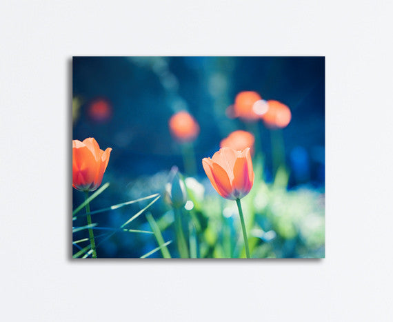 Blue Orange Nature Wall Art by carolyncochrane.com