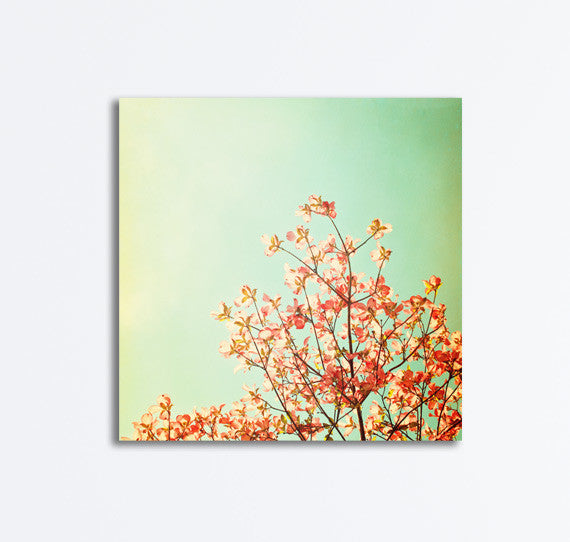 Turquoise Peach Nature Canvas by carolyncochrane.com
