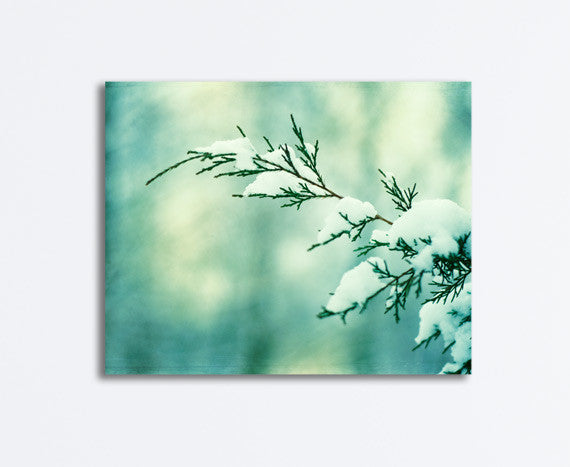 Mint Winter Wall Decor by carolyncochrane.com