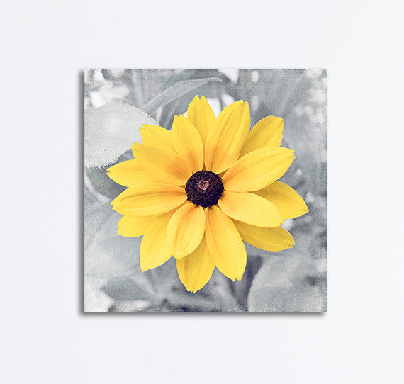 Yellow Grey Flower Photography Canvas, CarolynCochrane.com