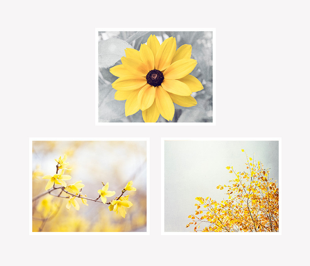 Floral Black And Grey Nature Tattoo: Yellow Grey Nature Photography Set